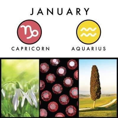 January birth symbol