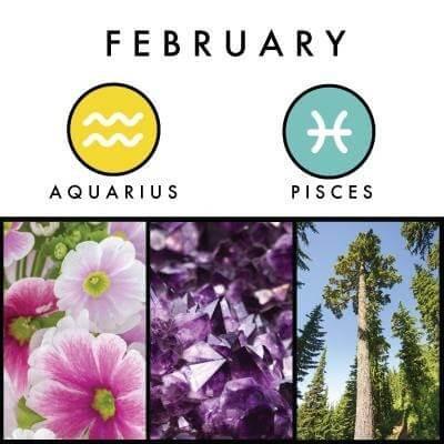 February birth symbols