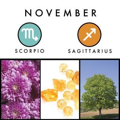 November birth symbols