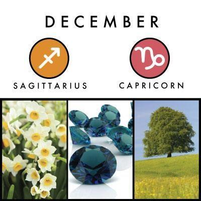 December birth symbols