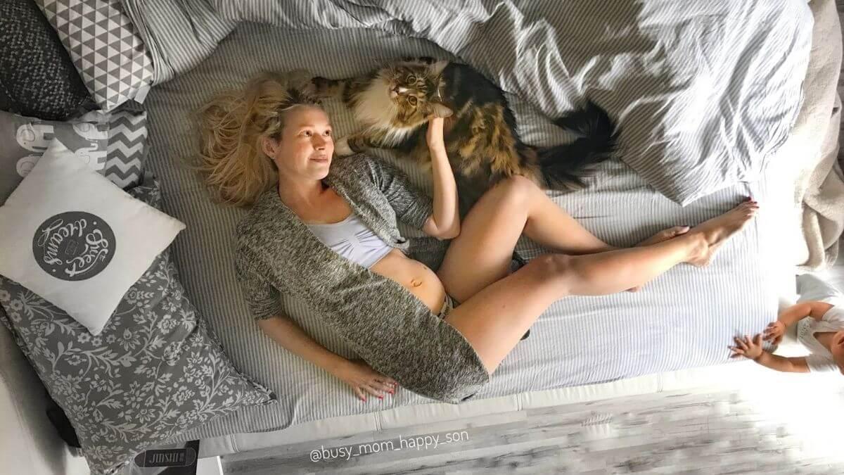 Can Cats Sense Pregnancy